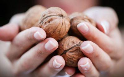 Door noten een gezondere huid!